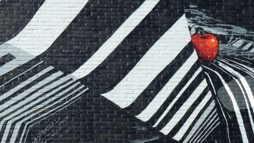 Detail zwart wit rode appel