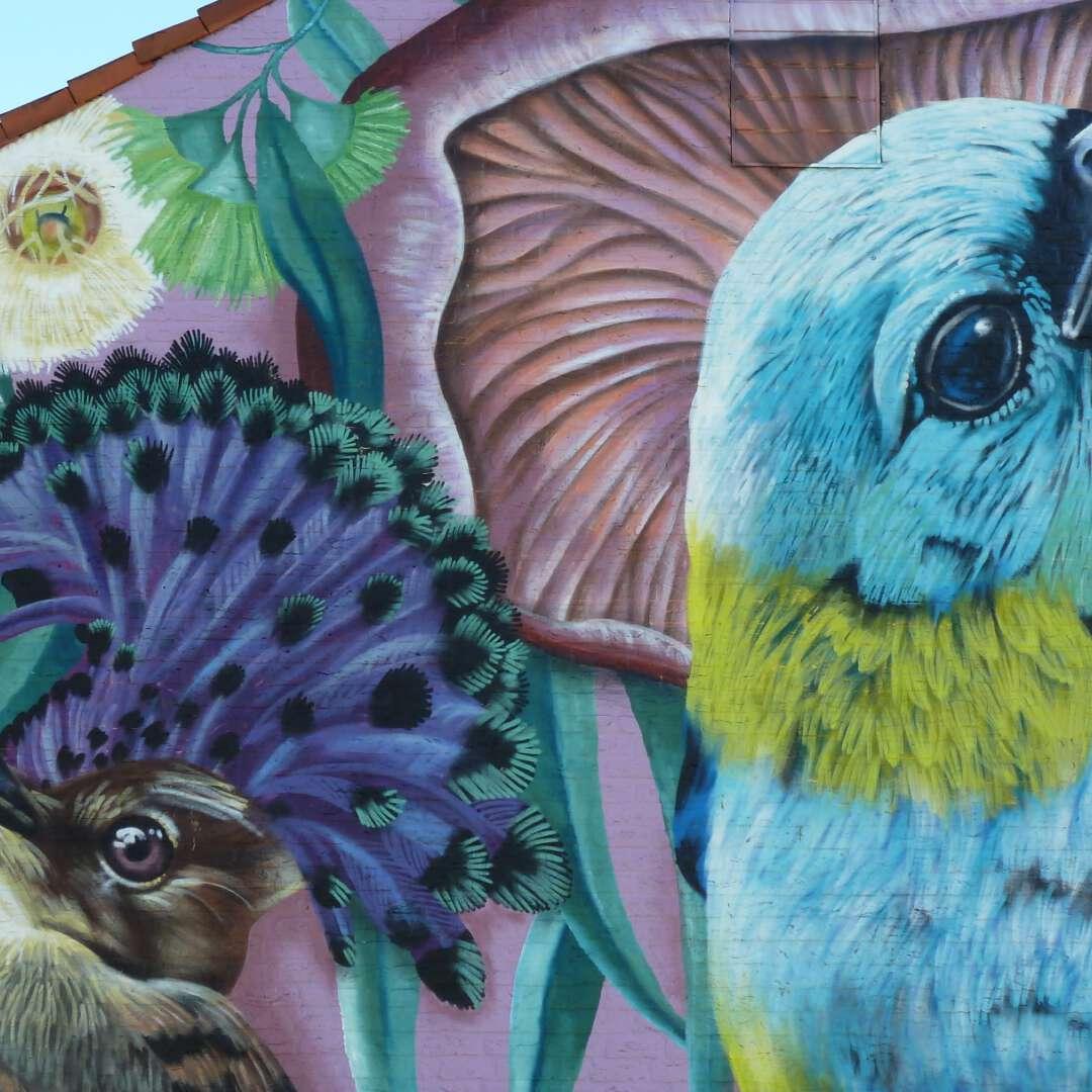 Mural art 2021 nina valkhoff 2160x1216