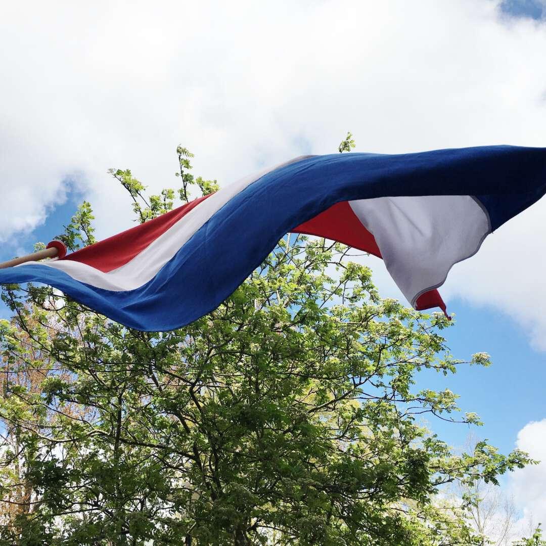 Vlag boom wolk lucht 2160x1620